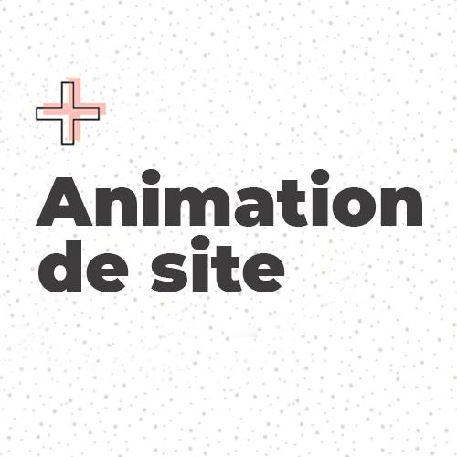 Animation de site